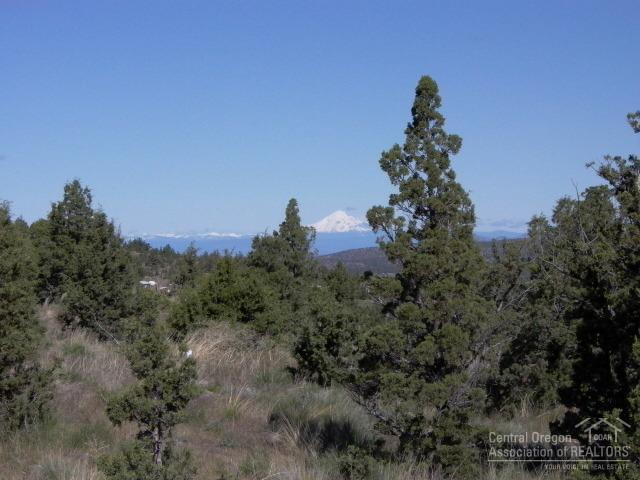 0 SE Walther Loop Tl3100, Prineville, OR 97754 (MLS #201810651) :: Team Birtola | High Desert Realty