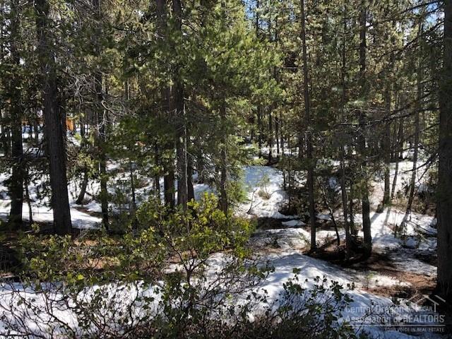 4 Blue Sky Way, Crescent Lake, OR 97733 (MLS #201902682) :: Stellar Realty Northwest