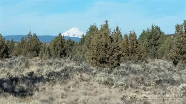 8920 NW Mesa Lane, Terrebonne, OR 97760 (MLS #201903770) :: Fred Real Estate Group of Central Oregon