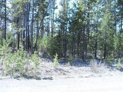 51245 SW Parker Road, La Pine, OR 97739 (MLS #201904420) :: Team Birtola | High Desert Realty
