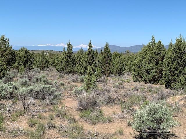 0 SE Moki Road Tl 600, Prineville, OR 97754 (MLS #201905093) :: Fred Real Estate Group of Central Oregon
