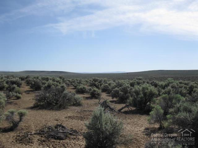 0 Hanson Valley Road, Christmas Valley, OR 97641 (MLS #201906165) :: Central Oregon Home Pros
