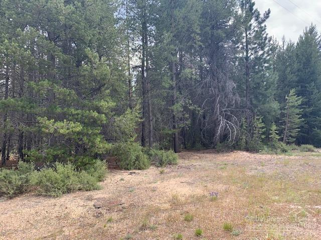 0 Hwy 97, Crescent, OR 97733 (MLS #201906587) :: Berkshire Hathaway HomeServices Northwest Real Estate