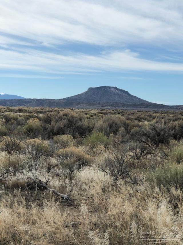 3500 Off Oil Dri Road Tl, Christmas Valley, OR 97541 (MLS #202001043) :: The Ladd Group