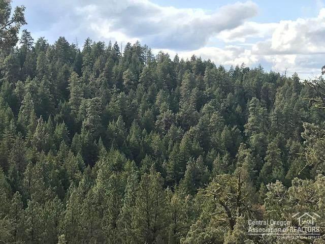 0-TL700 NE Johnson Creek Road, Prineville, OR 97754 (MLS #202003392) :: Bend Homes Now