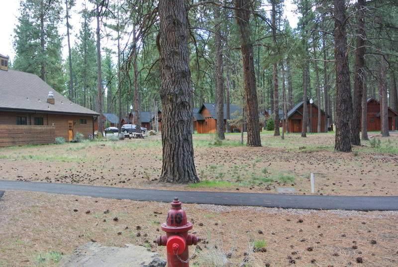 1061 Desperado Trail - Photo 1