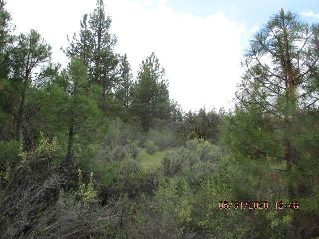 Lot 5 Partin Drive, Beatty, OR 97621 (MLS #220102467) :: Coldwell Banker Bain