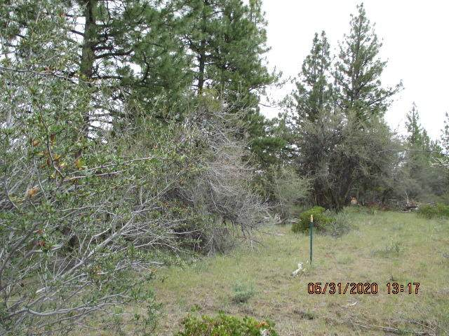 Lot 8-Block 21 Prather Drive, Beatty, OR 97621 (MLS #220102491) :: Team Birtola | High Desert Realty
