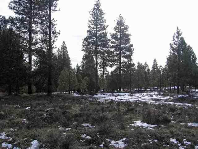5-Lot Misty Mountain Drive, Keno, OR 97627 (MLS #220102508) :: Rutledge Property Group