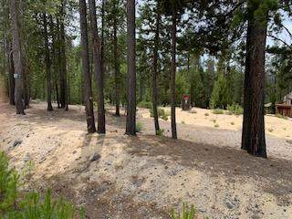 Emerald Meadows Way, Crescent Lake, OR 97733 (MLS #220103900) :: Team Birtola | High Desert Realty