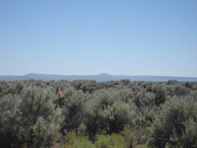 TL: 900 Off Rock House (Apn 717) Road, Christmas Valley, OR 97641 (MLS #220103901) :: The Ladd Group