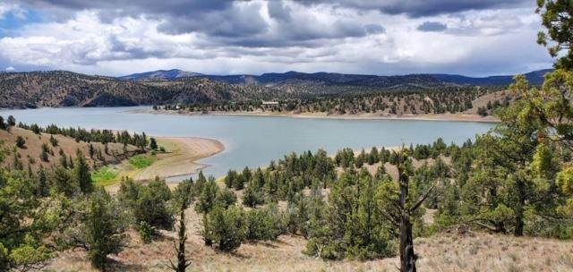 18553 SE Doubtful Dirt Road, Prineville, OR 97754 (MLS #220103951) :: Team Birtola | High Desert Realty
