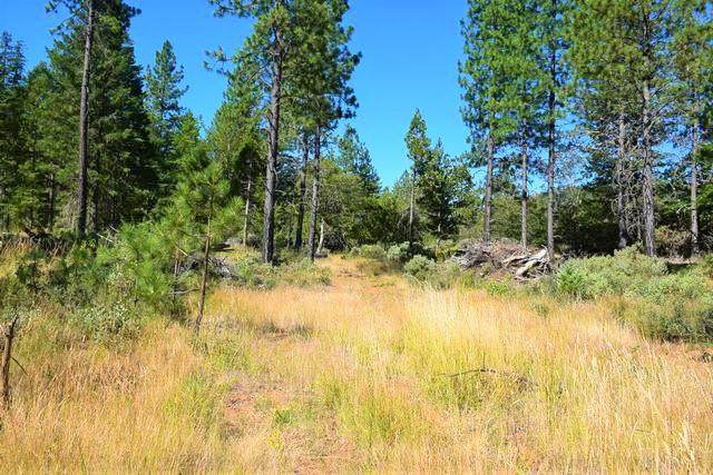 1400 TL Airport Drive, Cave Junction, OR 97523 (MLS #220104757) :: FORD REAL ESTATE