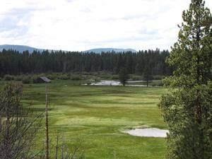 23251 Campbell Road, Bly, OR 97622 (MLS #220105855) :: Bend Relo at Fred Real Estate Group