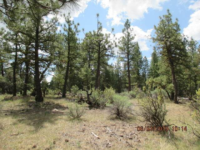 Lot 24 Elde Street, Chiloquin, OR 97624 (MLS #220106253) :: Coldwell Banker Sun Country Realty, Inc.