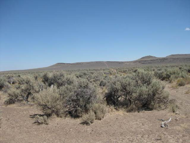TL 2300 No Name (27S18e14-00-02300) Road, Christmas Valley, OR 97641 (MLS #220107163) :: Bend Relo at Fred Real Estate Group