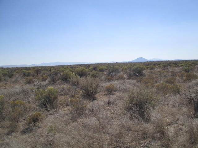 TL:200 Salt Flat [27S16e00-000200 Lane, Christmas Valley, OR 97641 (MLS #220108657) :: Fred Real Estate Group of Central Oregon