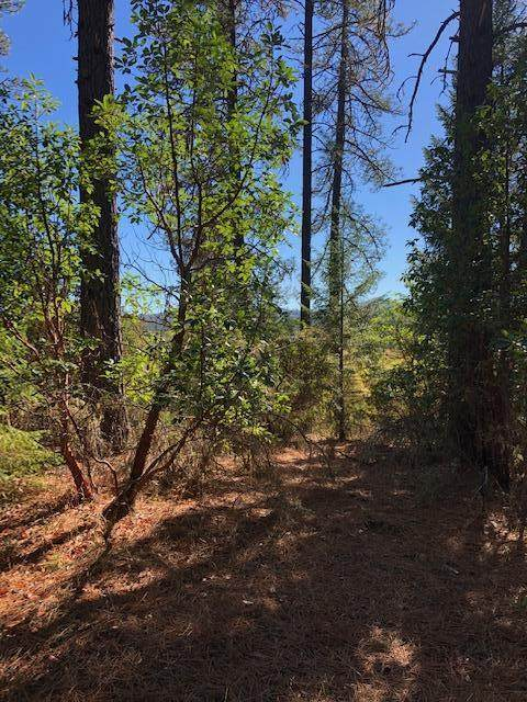 E Evans Creek Tax Lot 1000 Road, Central Point, OR 97502 (MLS #220111159) :: Premiere Property Group, LLC