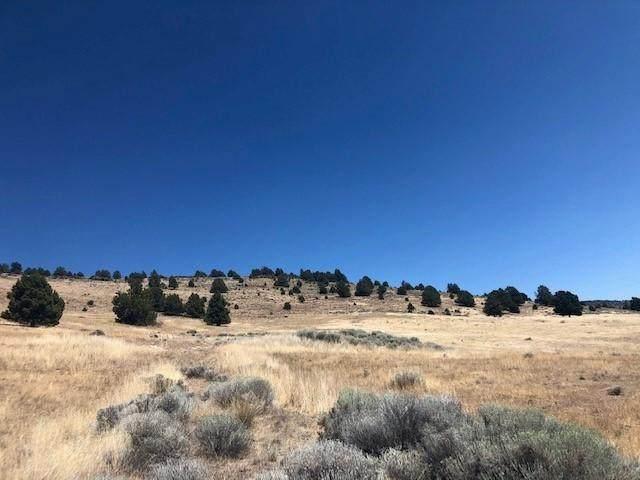 Vale Road Lot 102, Klamath Falls, OR 97603 (MLS #220111342) :: Team Birtola   High Desert Realty