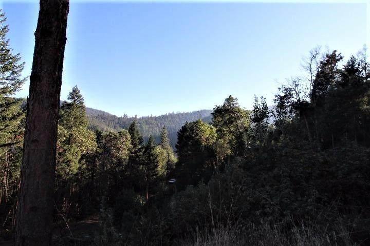 6744 Coleman Creek Road - Photo 1