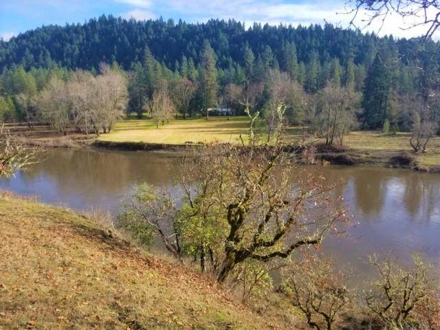 5075 Riverbanks Road, Grants Pass, OR 97527 (MLS #220114120) :: The Payson Group