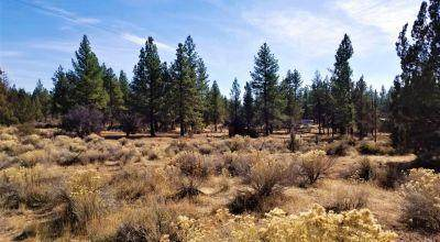 19 5th Street, Sprague River, OR 97639 (MLS #220115376) :: Fred Real Estate Group of Central Oregon