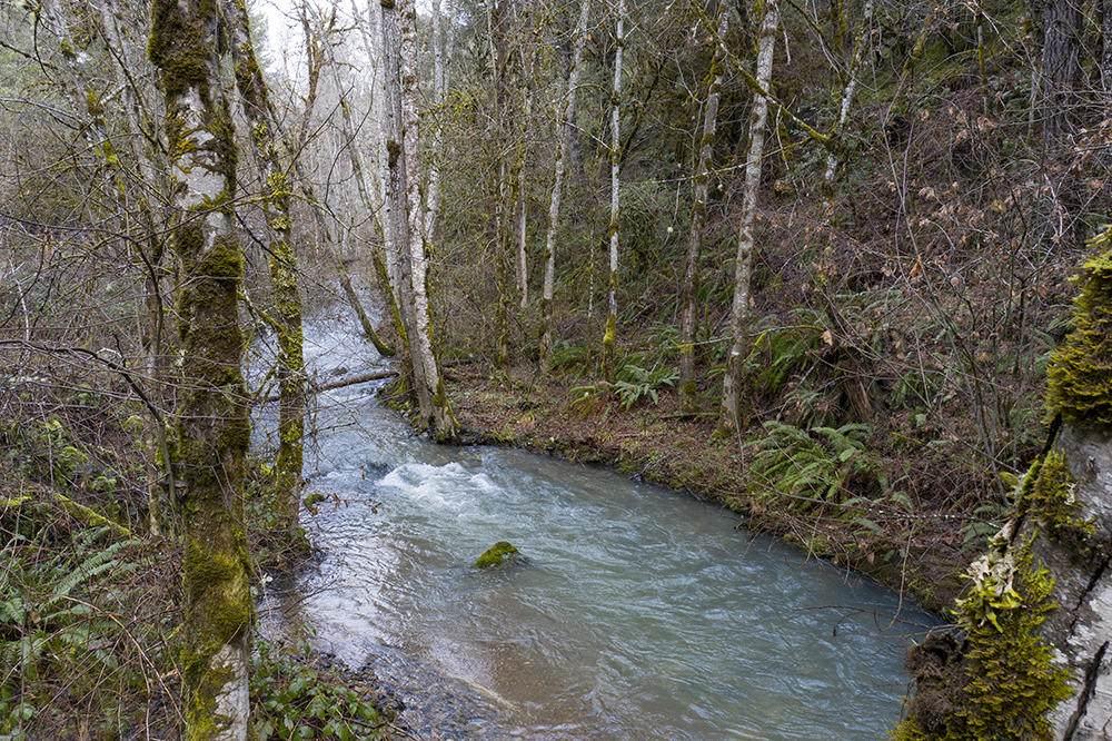 0 Poorman Creek Road - Photo 1