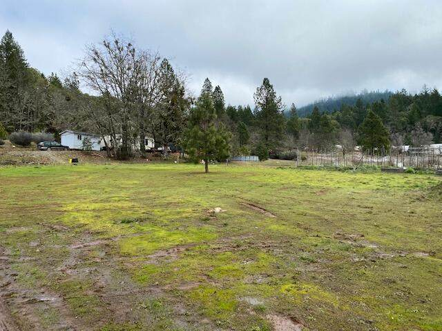 185 Browntown Road, Cave Junction, OR 97523 (MLS #220117309) :: Coldwell Banker Bain