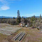 5225 Rockydale Road, Cave Junction, OR 97523 (MLS #220117480) :: The Riley Group