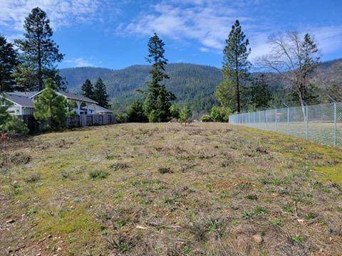 122 Cabernet Circle, Cave Junction, OR 97523 (MLS #220118465) :: Vianet Realty