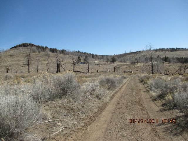 Lot 8 Mountain Trout Lane, Sprague River, OR 97639 (MLS #220119135) :: Coldwell Banker Bain