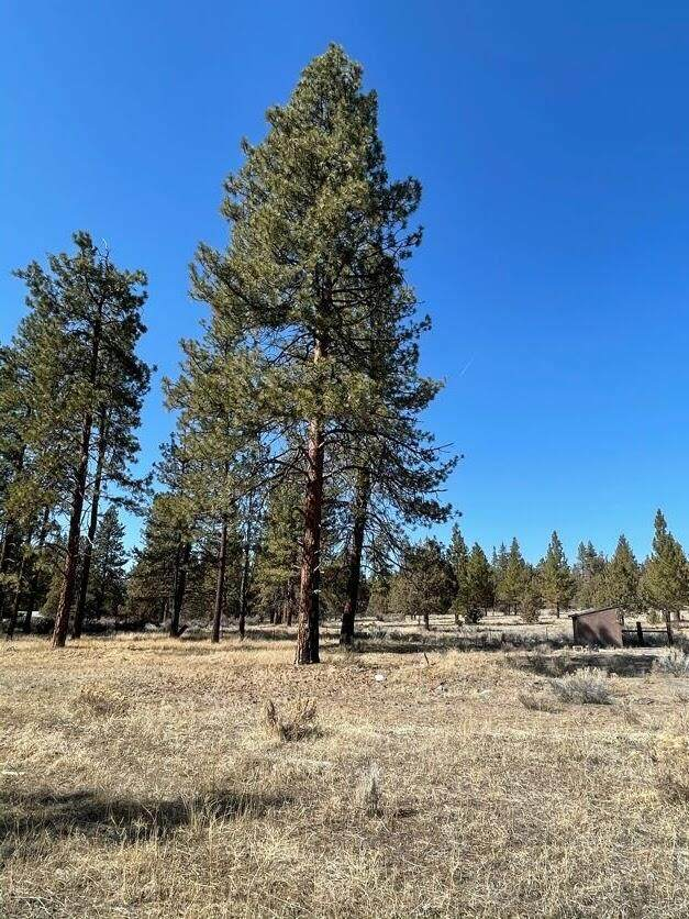 Ruddy Duck Drive Lot 42, Bonanza, OR 97623 (MLS #220119298) :: Berkshire Hathaway HomeServices Northwest Real Estate