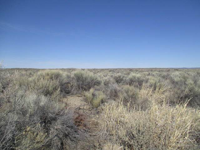 TL1000 Off Fossil Lake Rd[ Apn: 1814] Road, Christmas Valley, OR 97641 (MLS #220119383) :: Premiere Property Group, LLC