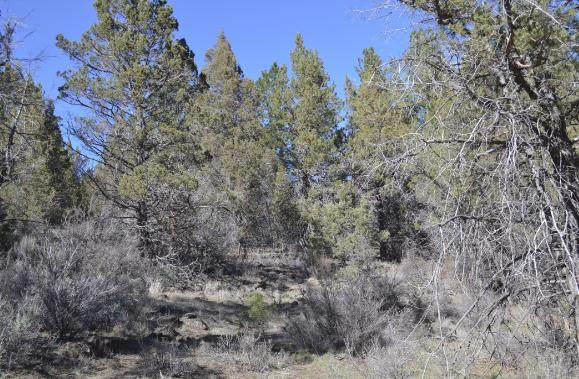 0 Kootenai St. Lot 9, Sprague River, OR 97639 (MLS #220120163) :: Bend Relo at Fred Real Estate Group