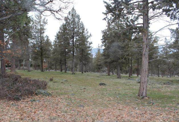 Dowitcher Lot 530, Klamath Falls, OR 97601 (MLS #220120310) :: Team Birtola | High Desert Realty