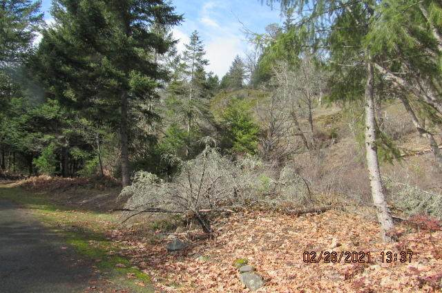 Flat Creek Road, Eagle Point, OR 97524 (MLS #220122202) :: FORD REAL ESTATE