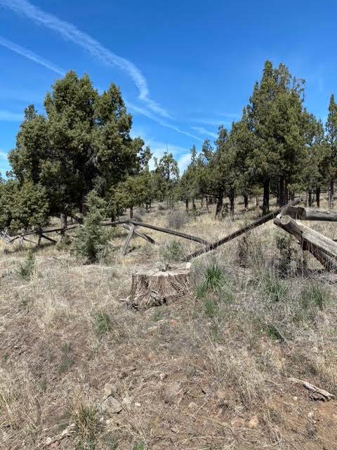 TL5700 SE Gatling Way, Prineville, OR 97754 (MLS #220122231) :: The Ladd Group