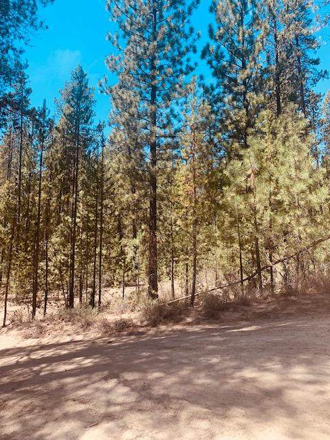 Lot 2200 Schoonover 1, Crescent, OR 97733 (MLS #220122702) :: Coldwell Banker Bain