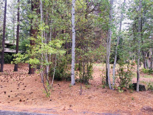19364 Soda Springs Drive, Bend, OR 97702 (MLS #220124565) :: The Ladd Group