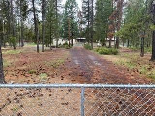 52731 Golden Astor Road, La Pine, OR 97739 (MLS #220124852) :: Fred Real Estate Group of Central Oregon