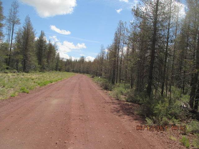 Lot 4 Scottview, Chiloquin, OR 97624 (MLS #220125332) :: Stellar Realty Northwest