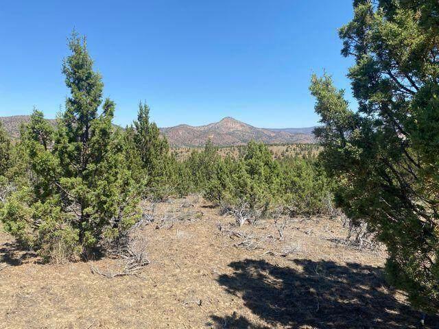 0 Undetermined Situs Address, Mitchell, OR 97750 (MLS #220127254) :: Team Birtola   High Desert Realty