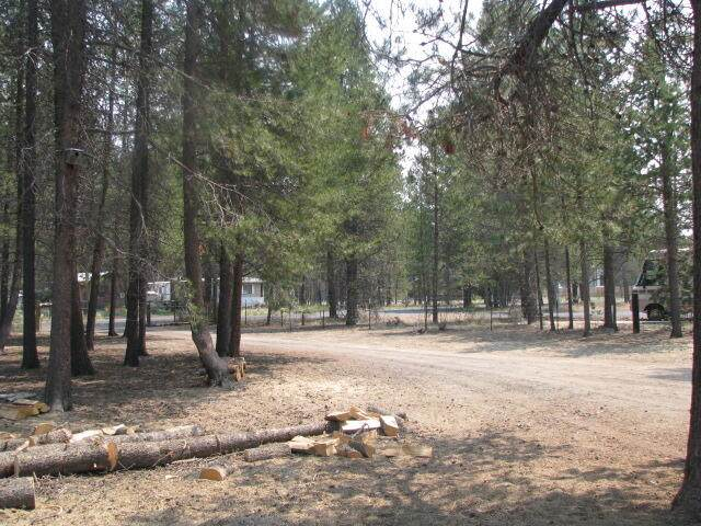 51360 Mitchell Road, La Pine, OR 97739 (MLS #220127904) :: Fred Real Estate Group of Central Oregon