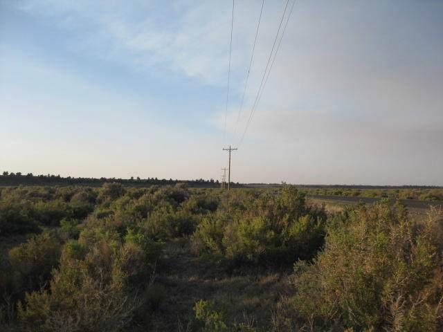 TaxLot 700 Millican ((26S17e00-00-00700) Road - Photo 1