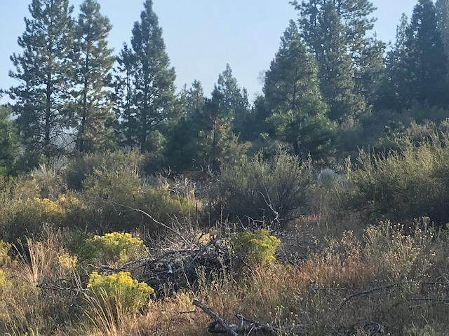 TL724 Johnson Creek Road, Prineville, OR 97754 (MLS #220128436) :: Bend Relo at Fred Real Estate Group