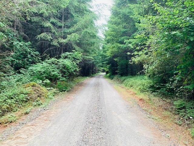 0 Kenady Lane, Cottage Grove, OR 97424 (MLS #220130118) :: Vianet Realty