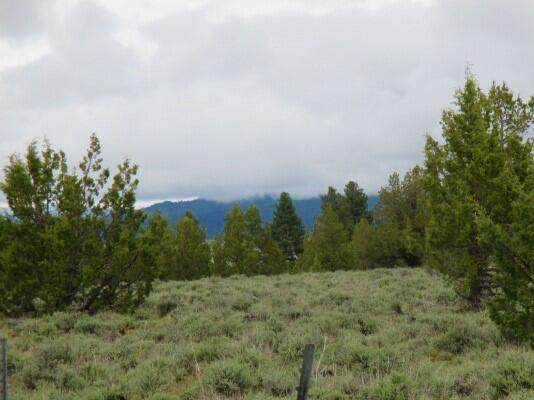 Lot 5600 Fishhole Creek Road, Bly, OR 97622 (MLS #220131620) :: Bend Relo at Fred Real Estate Group