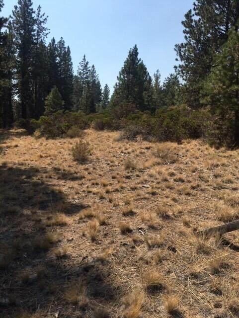 19148 Pumice Butte Road, Bend, OR 97702 (MLS #220132488) :: Stellar Realty Northwest