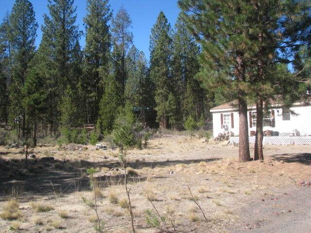 153030 Collar Drive, La Pine, OR 97739 (MLS #220132549) :: Bend Homes Now