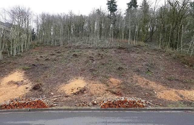 4624 SE Deer Creek Place, Gresham, OR 97080 (MLS #220132583) :: Fred Real Estate Group of Central Oregon